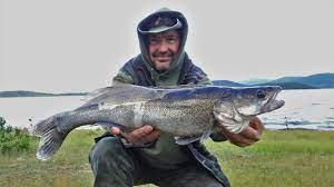 За бяла риба с приятели 2021 г.
